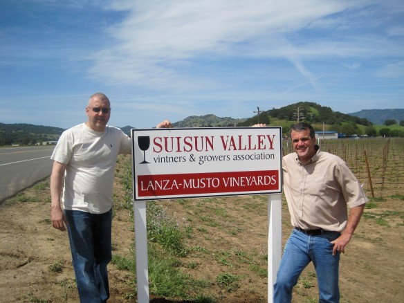 Lanza-Musto Vineyards