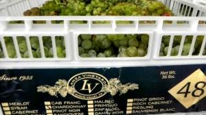 Lanza Vineyard Chardonnay